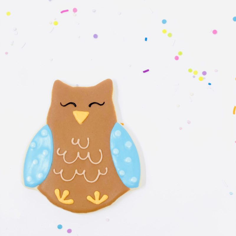 Owl Shaped Cookies (6)