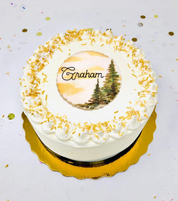 Vegan Lake Life Cakes