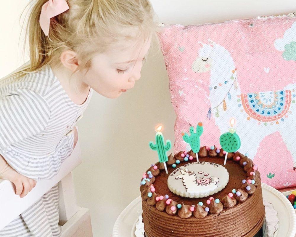 vegan themed cakes
