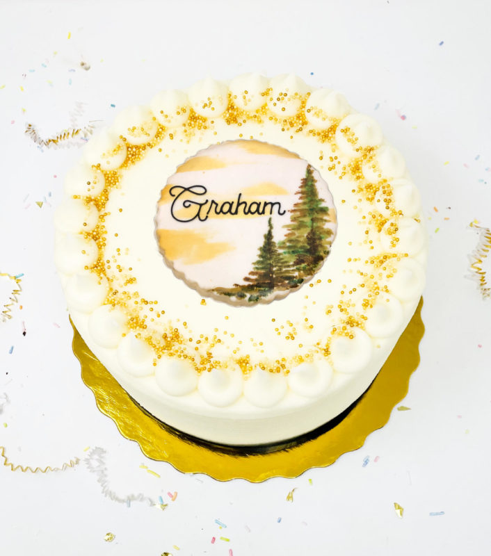 Vegan Lake Life Cake