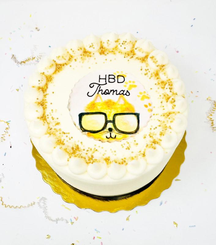 Vegan Cool Cat Cake